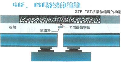 TST桥梁无缝伸缩缝